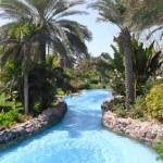 O jardim e uma das piscinas